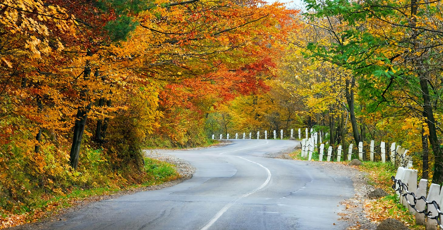 Visit the Berkshires: Get Your Free Guide!