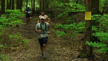 Runners in the forest trees