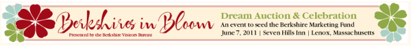 auction_banner-resized-600