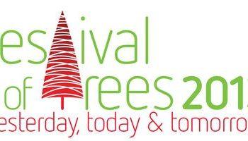 Festival of Trees 2013