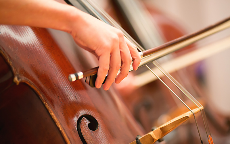 Boston Symphony Orchestra & Tanglewood - Berkshire Attraction
