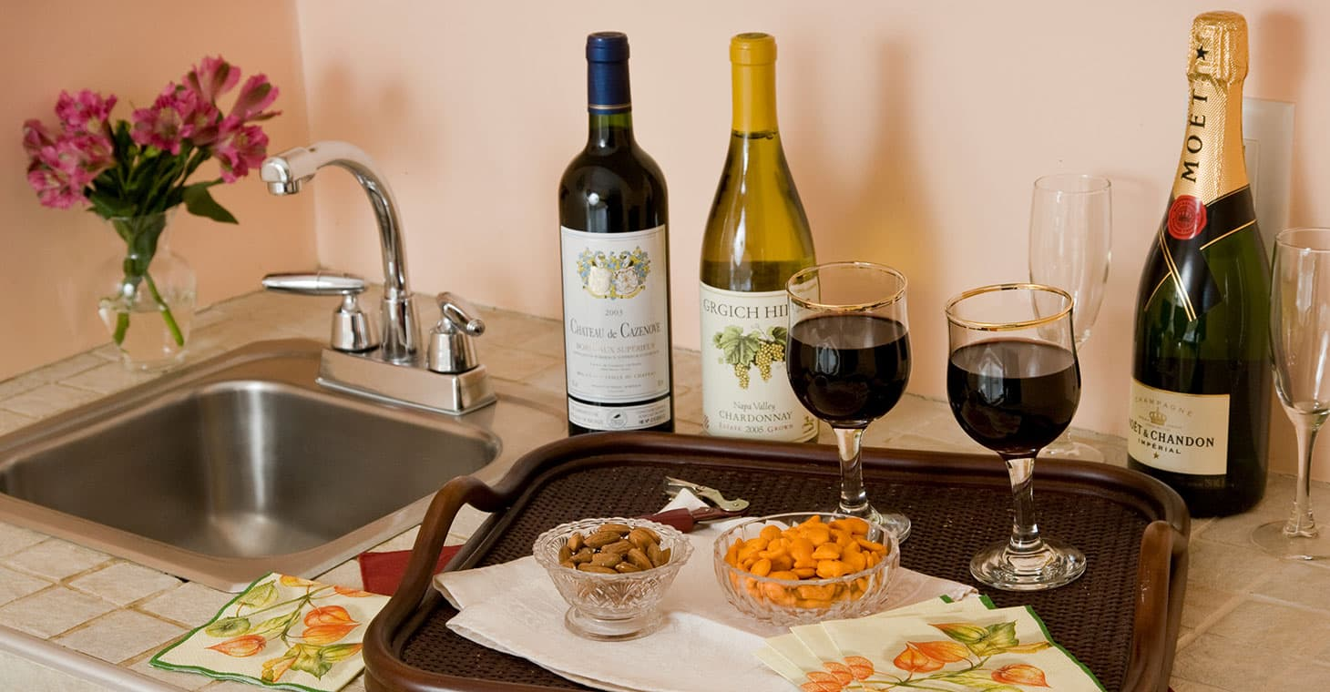 Assortment of wines with snacks on a tray