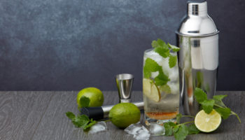 Best Gin and Tonic Recipe Ingredients